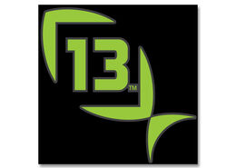 13 Fishing Vinyl Decal - Green - Medium