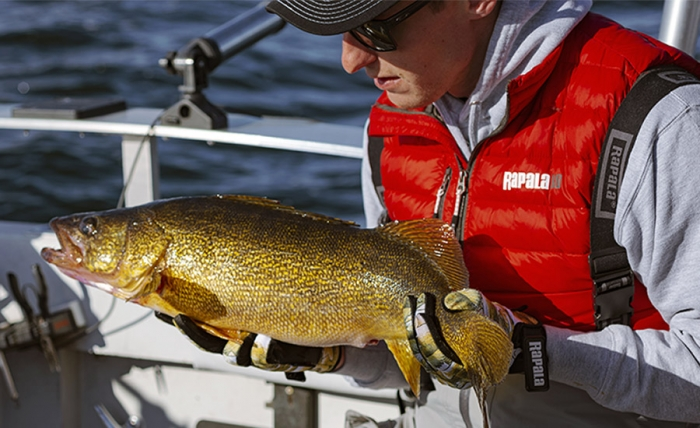 TROLLING FOR FALL WALLEYE - SIMPLIFIED