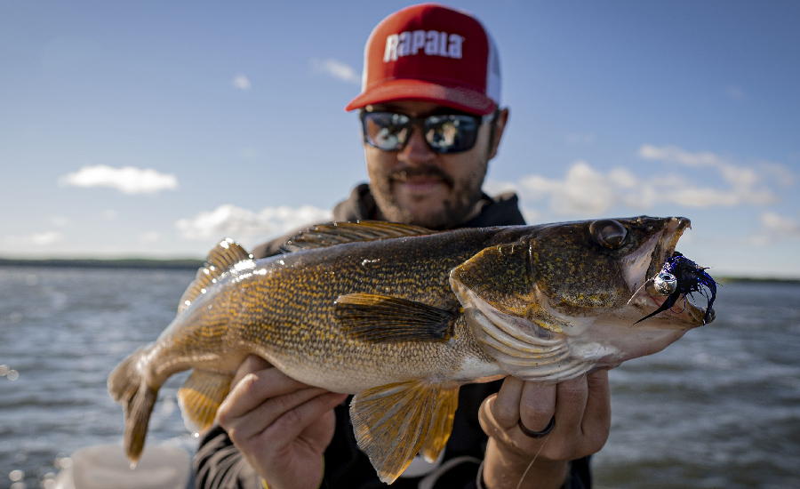 Rip jigging Walleye Secrets