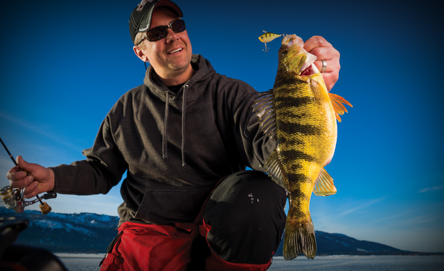 Best Baits for Ice Fishing Perch