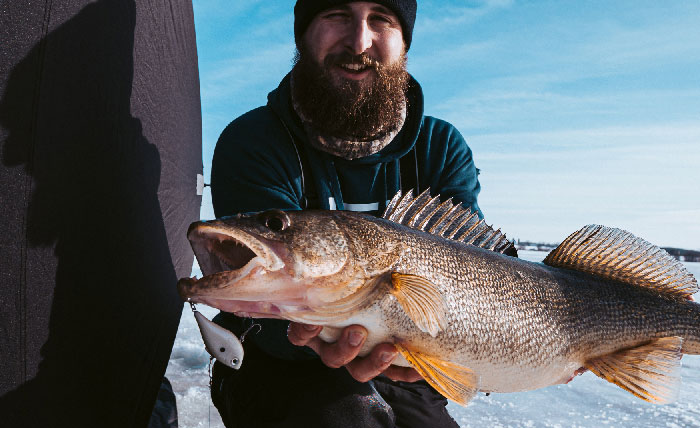 Run-And-Gun Walleye Tactics