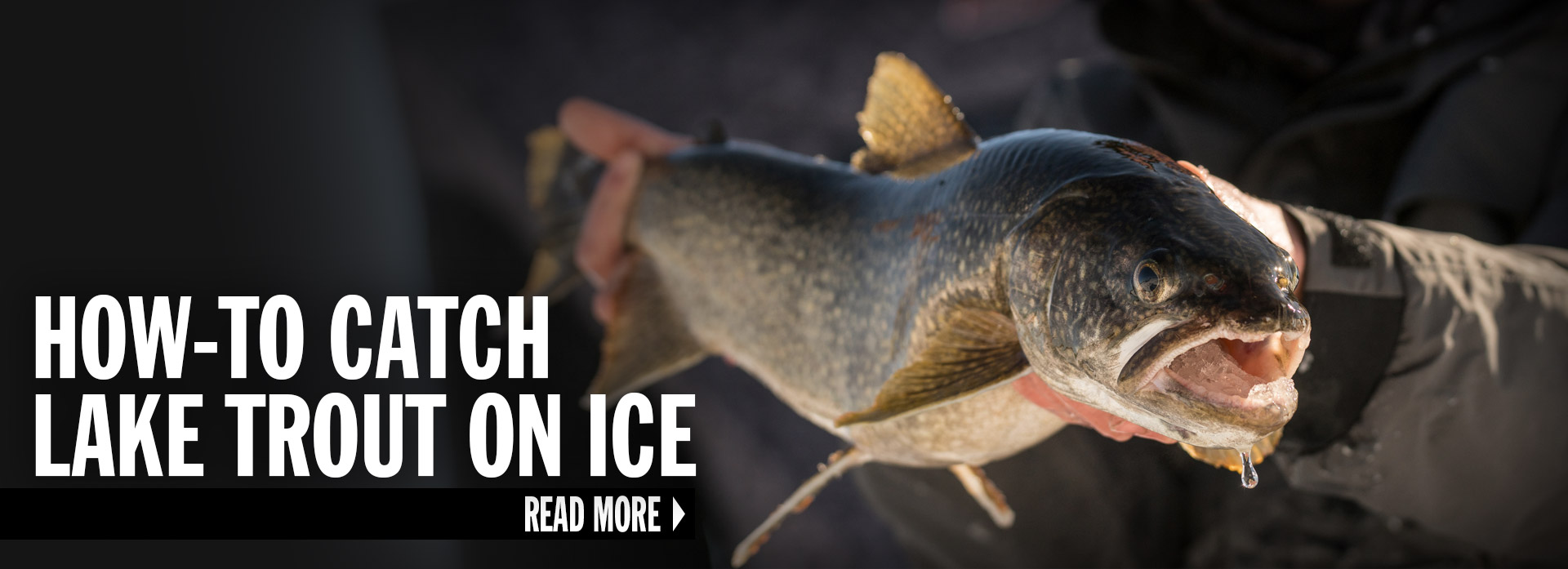 How-To Catch Lake Trout On Ice