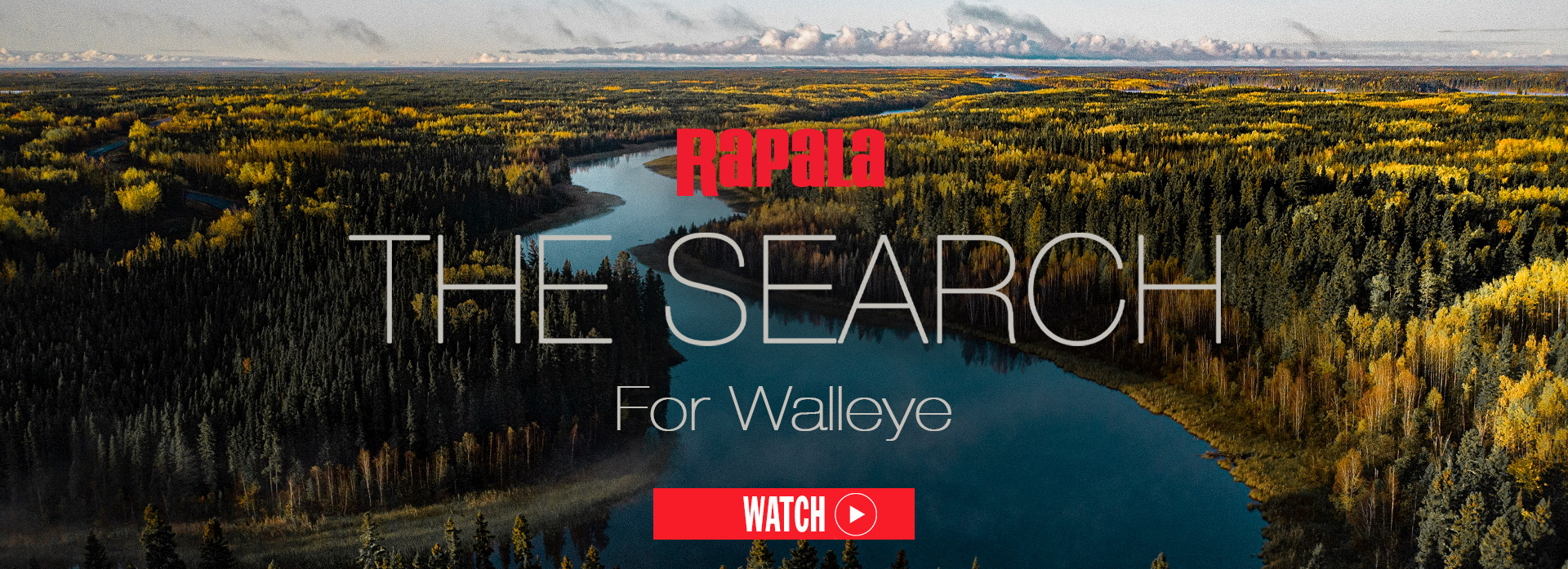 The Search For Walleye