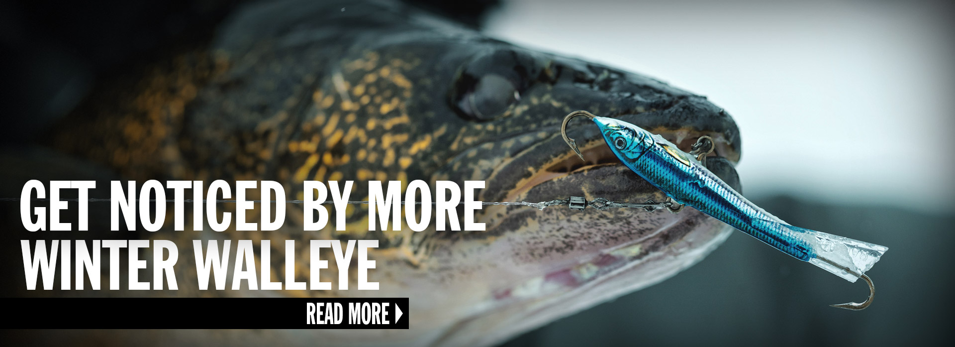 Get Noticed By More Winter Walleye