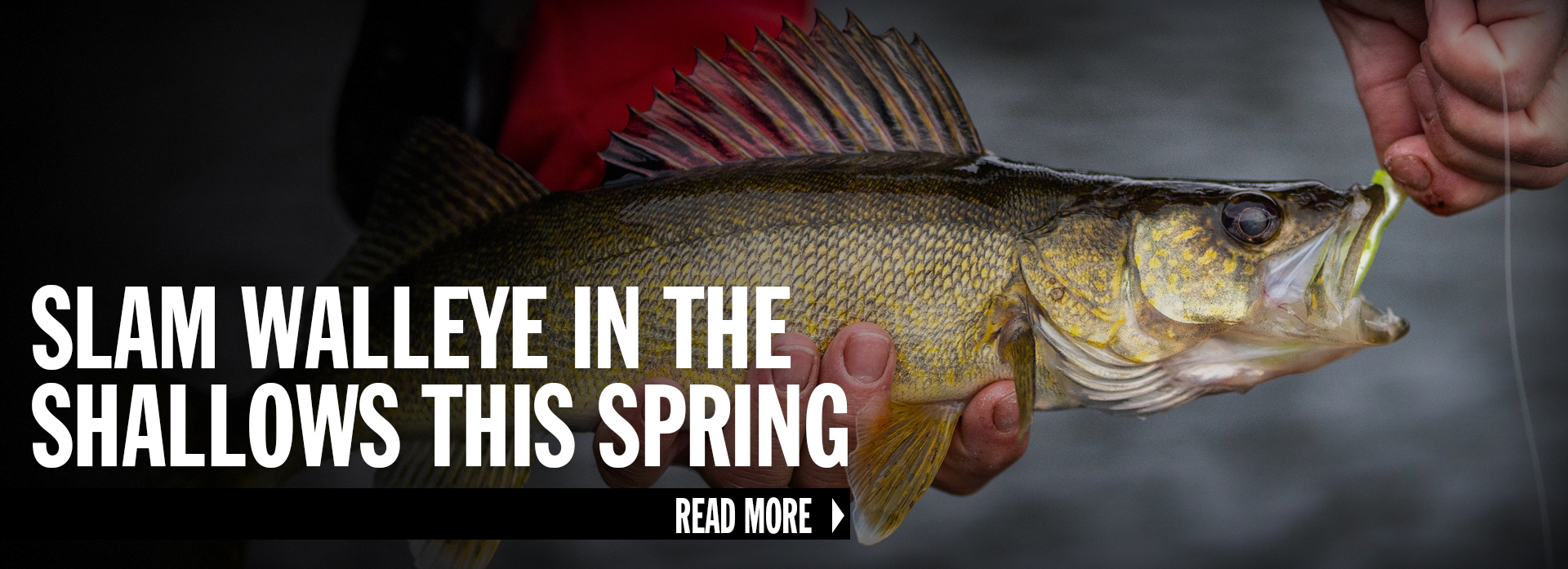 Slam Shallow Spring Walleye