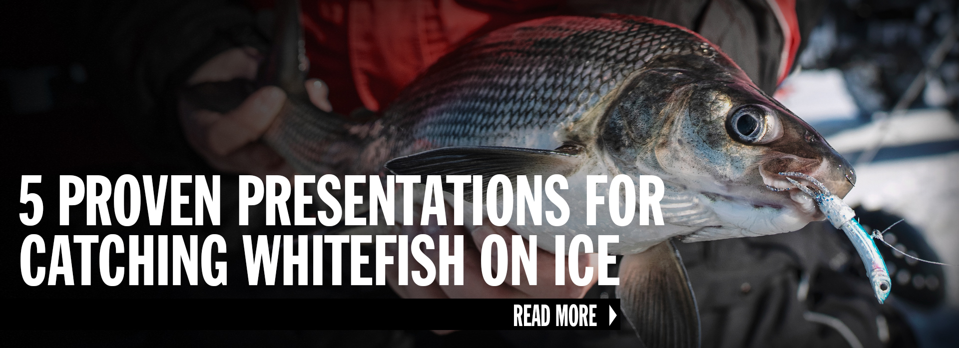 Understand Ice Spoon Differences to Catch More Fish
